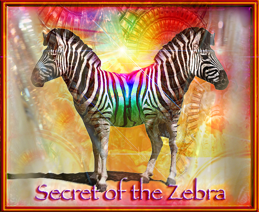 Secret of the Zebra… Where we must go in our thinking!